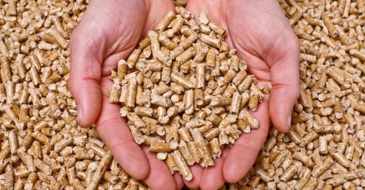 Trwa sezon na tani opał. Ekologiczny pellet drzewny coraz ...
